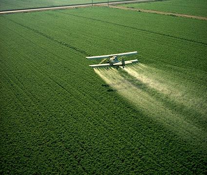 Acque. Inquinamento causato dai nitrati (da lexambiente.com)